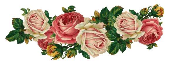 roses dividers clip art - photo #43